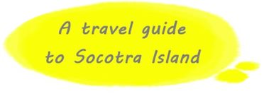 A travel guide to Socotra Island